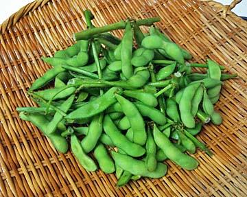 枝豆も新鮮です
